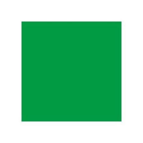 Chroma Key Vinilo Green